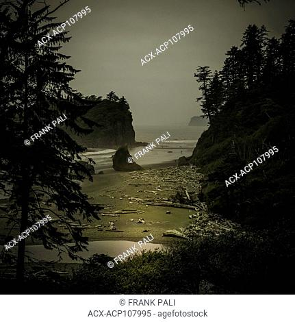 Ruby Beach to be Olympic wilderness coast line Olympic Peninsula, Washington State, USA