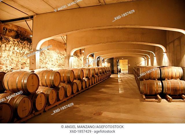 David Moreno wine cellar, La Rioja, Spain