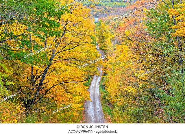Burnett's Side Road in autumn, Manitoulin Island, Ontario, Canada