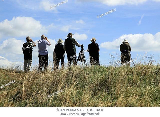 People birdwatching at RSPB reserve, Boyton Marshes, Suffolk, England, UK