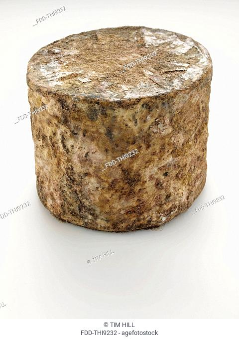 Cave aged traditional cloth wrapped mature cheddar cheese truckle