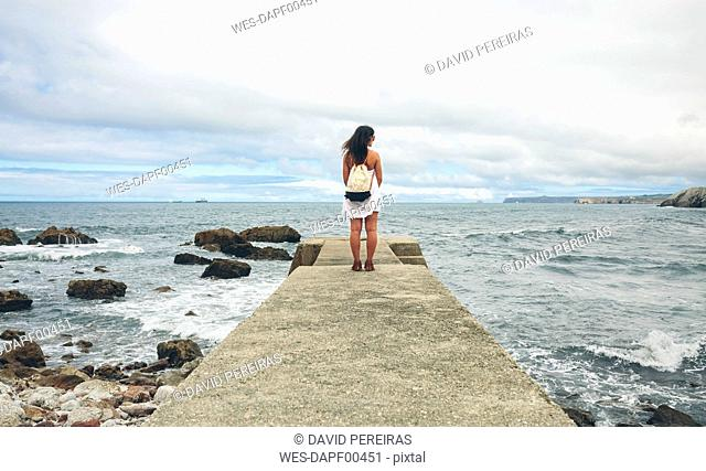Back view of woman standing on pier looking at distance