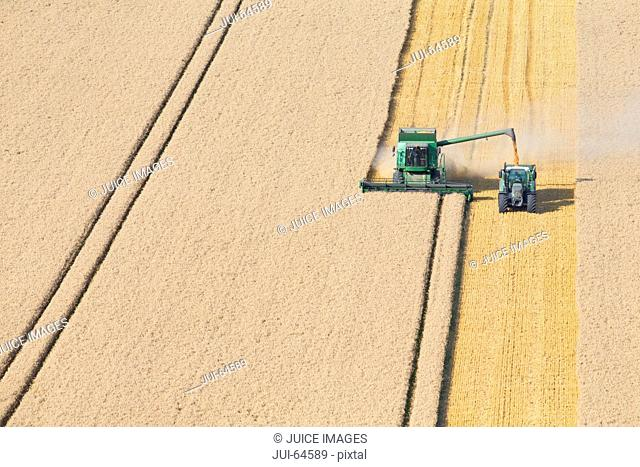 Combine harvester, harvesting wheat into trailer, in rural field