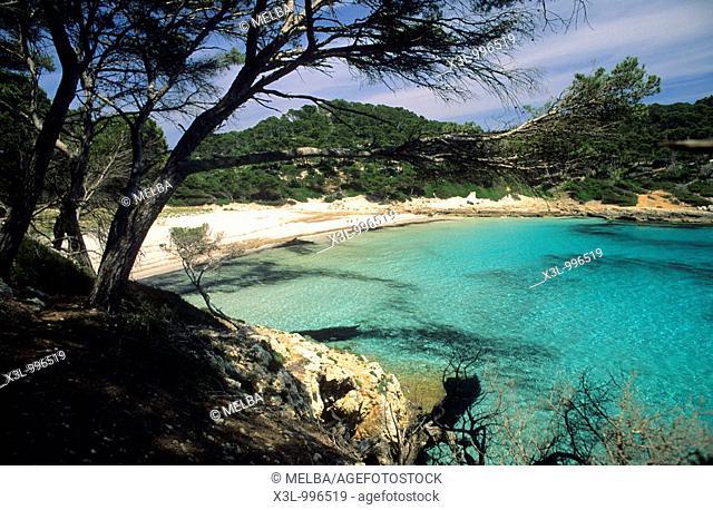 Beach of cala Trebaluguer  Minorca  Balearic Islands  Spain