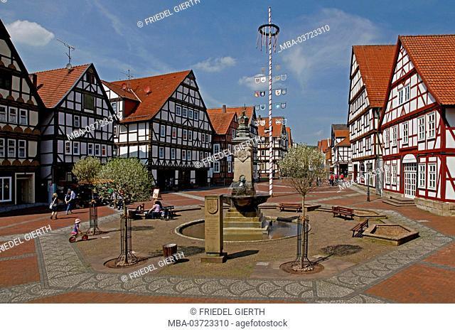 Germany, Hesse, Hofgeismar (town), market, Marktbrunnen (fountain), half-timbered houses, maypole