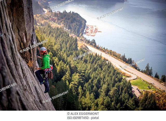Young female rock climber climbing rock face, elevated view, The Chief, Squamish, British Columbia, Canada
