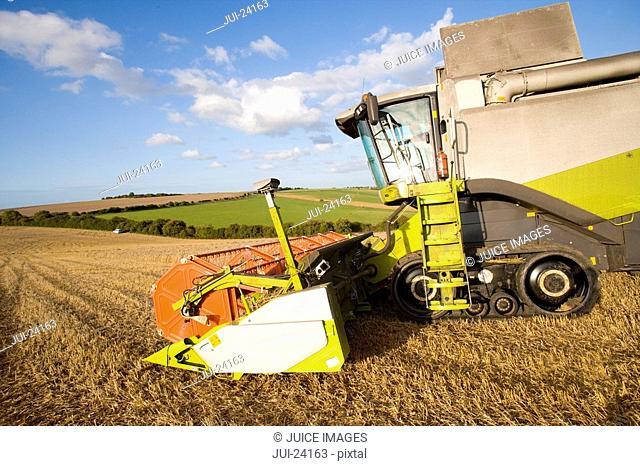 Combine harvesting wheat in sunny rural field