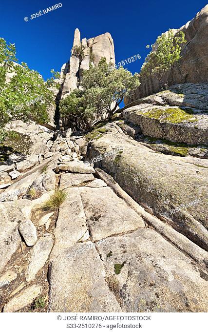 Cliffs of Little Bird in The Pedriza. Sierra de Guadarrama. Manzanares el Real. Madrid. Spain. Europe