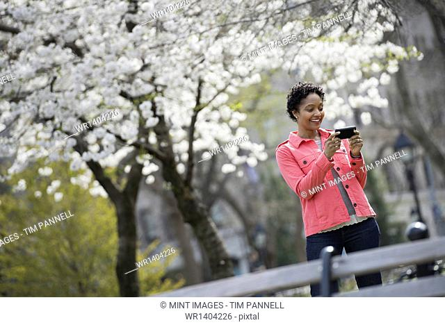 Outdoors in the city in spring time. New York City park. White blossom on the trees. A woman holding her mobile phone and smiling