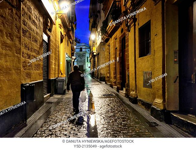 Old town of Cadiz by night, Andalusia, Spain