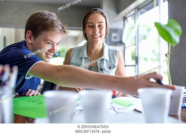 Boy and girl examining plant