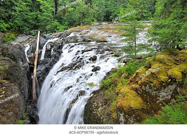 Englishman River Falls Englishman River Falls Provincial Park British Columbia Canada