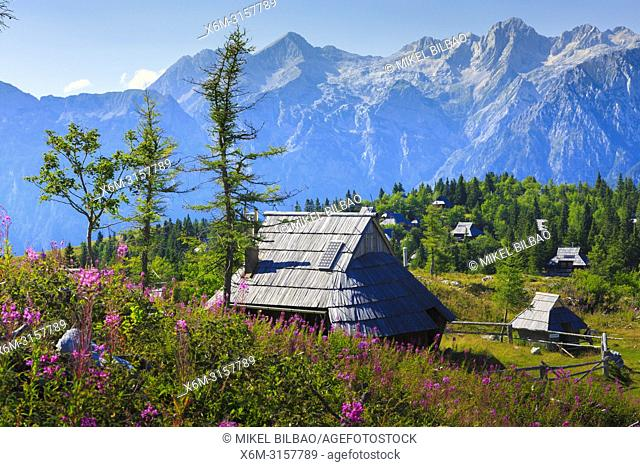Mountains in summer with hut and flowers. Velika Planina sky area. Upper Carniola region. Slovenia, Europe