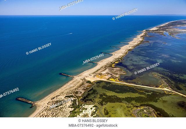 Mediterranean coast west of Saintes-Maries-de-la-Mer, brackish-water area of Etang de Melégal, Camargue, Bouches-du-Rhône department, Le Grau-du-Roi