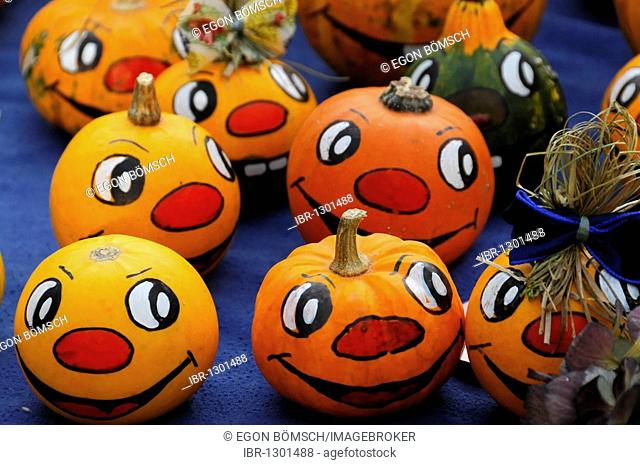Small painted pumpkins, stall at the weekly market, Stuttgart, Baden-Wuerttemberg, Germany, Europe