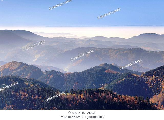 Lierbachtalblick, view of the Schliffkopf about the Black Forest to Vosges Mountains, Baden Wurttemberg, Germany