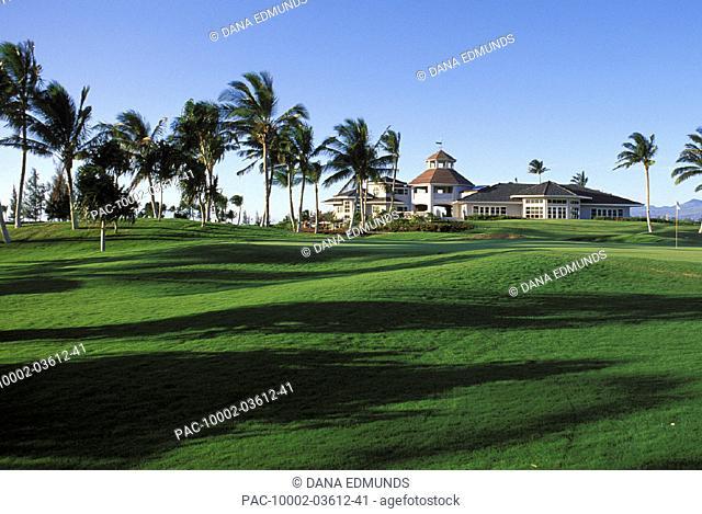 Hawaii, Big Island, Kings Club Waikaloa Golf Course, wind blown palms