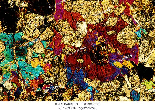 Diorite is an igneous intrusive rock. Polarised light, optical microscope. Magnification X20
