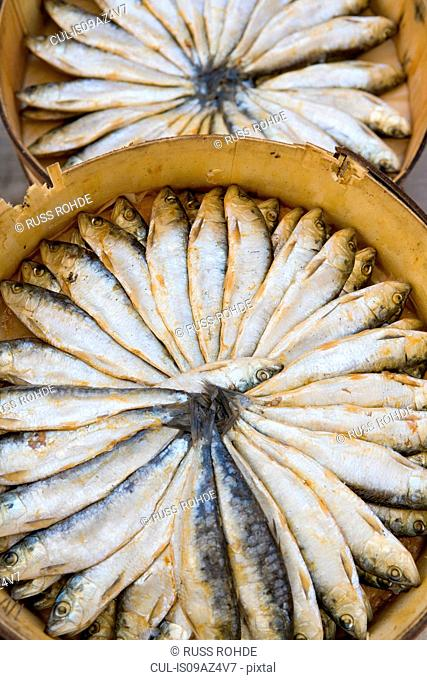 Overhead view of two circular boxes of fresh sardines