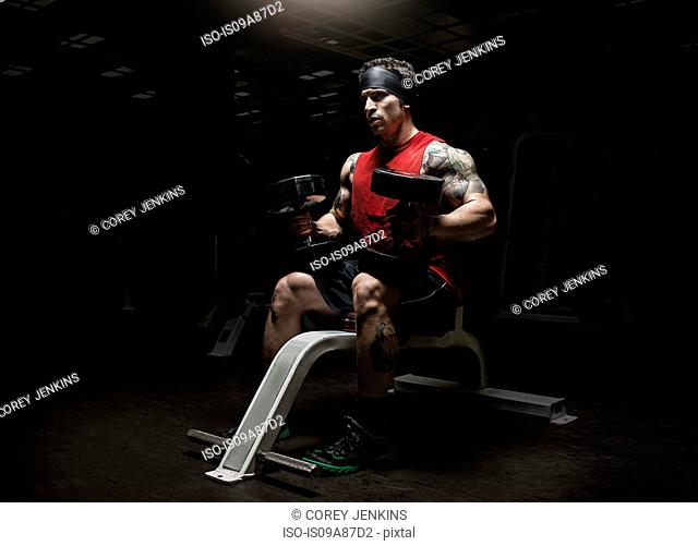 Muscular young man holding dumbbells in gym