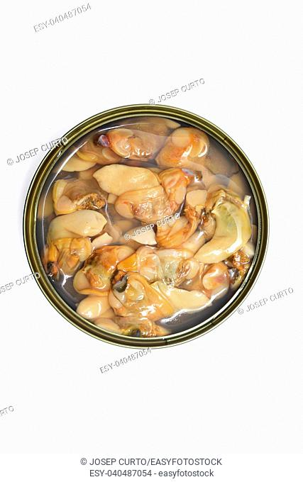 can of clams isolated