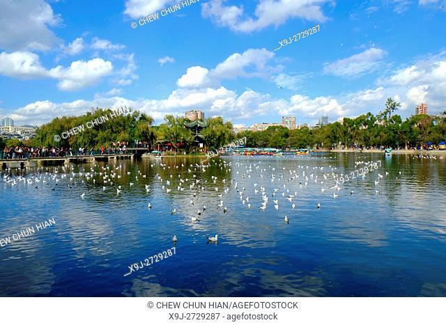 View of Cuihu Lake in Kunming, Yunnan, China