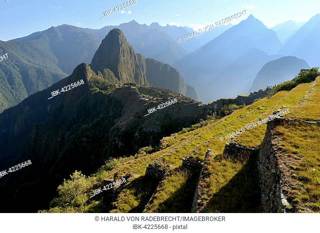 View of terraces at Machu Picchu, at sunrise, Peru