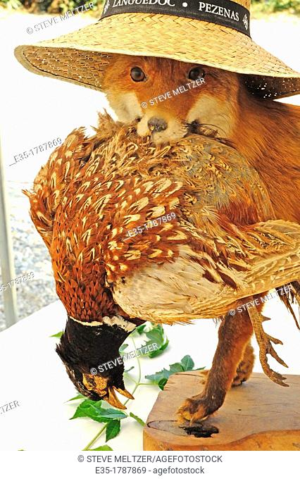 A taxidermy shop created this fox and pheasant for a French hunter who had shot them both