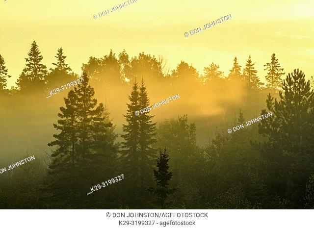 Sunbeams and dawn mists, Greater Sudbury, Ontario, Canada
