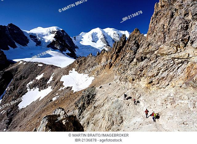 Climbers during the ascent to Piz Palue Mountain, with Piz Palue Mountain at the rear and Piz Cambrena Mountain on the right, Grisons, Switzerland, Europe