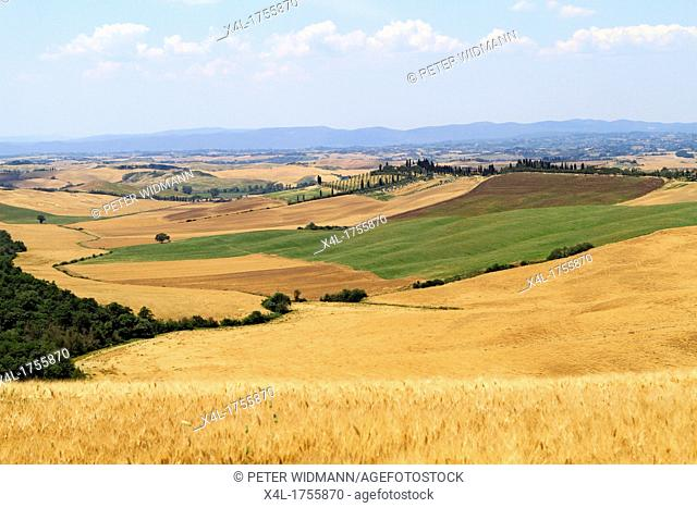 Italy typical landscape of Tuscany, Crete Senesi