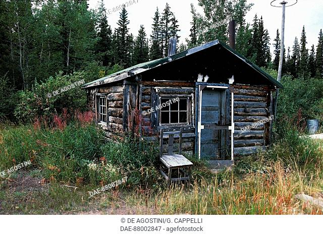 Uninhabited prospector hut, near Dawson City, Klondike, Alaskan gold rush, Alaska, United States of America