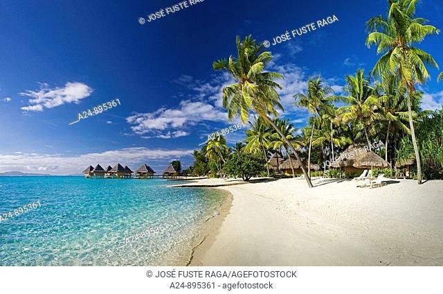 Matira  Beach at the InteContinental Resort, Bora Bora island, Society Islands, French Polynesia (May 2009)