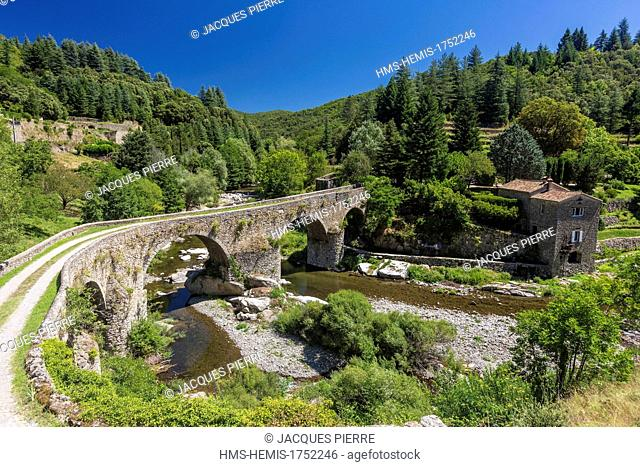 France, Gard, the Causses and the Cevennes, Mediterranean agro pastoral cultural landscape, listed as World Heritage by UNESCO, Cevennes National Park