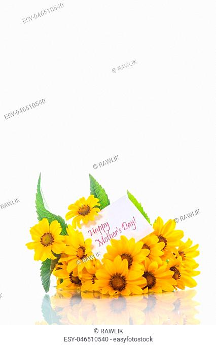 bouquet of yellow big daisies on a white background