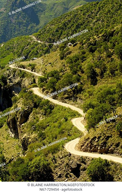 A dirt road passing through the Urique Canyon, the deepest canyon in the Sierra Tarahumara at 6,200 feet, is one of six distinct canyons that make up the Copper...