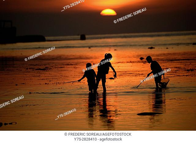 Silhouette of children fishing at sunset in Lovina Beach,Bali island,Indonesia