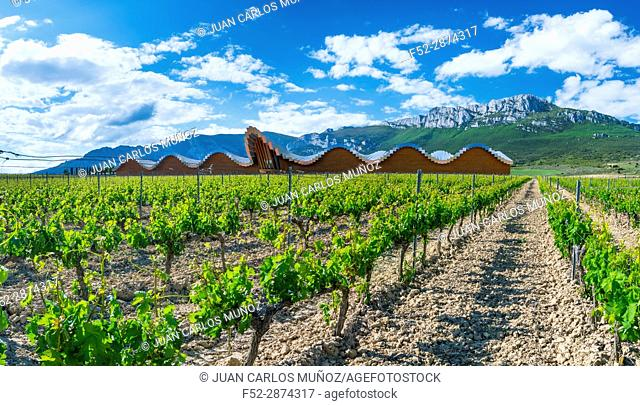YSIOS WINERY, This pixilated-looking landmark was designed by architect Santiago Calatrava and opened its doors in 2001. This extremely long building can be...