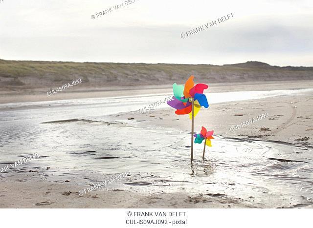 Paper windmills on beach, Bloemendaal aan Zee, Netherlands