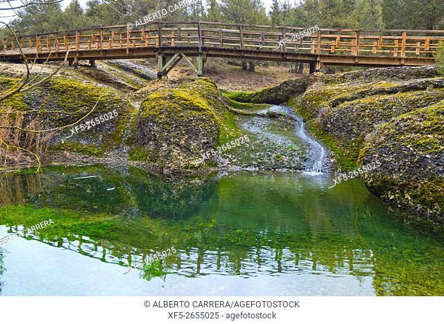 La Fuentona Natural Monument, La Fuentona de Muriel, Protected Nature Area, Abión River, Cabrejas del Pinar, Soria, Castilla y León, Spain, Europe