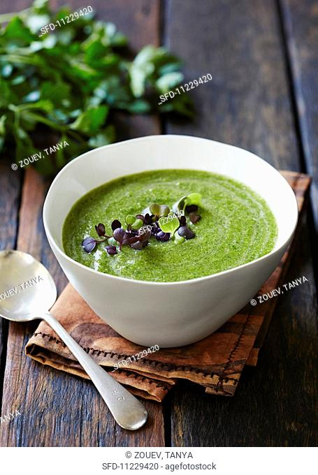 Creamed spinach soup
