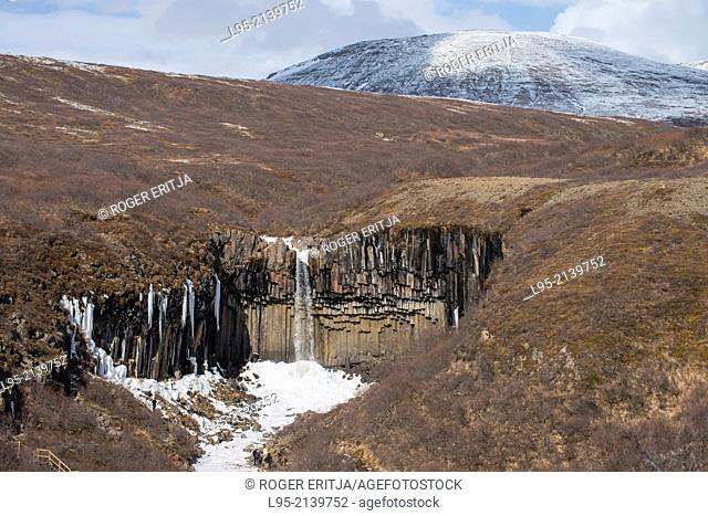 Well-known waterfall in iceland over a basaltic columnar system