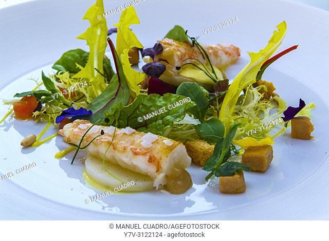 Plato de Ensalada de cigalas de Galicia (Galician lobster salad). Hotel-restaurante Marqués de Riscal . Elciego, Rioja Alavesa, Alava, Basque Country, Spain