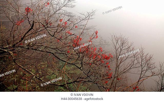 Mount Huangshan, Anhui, China