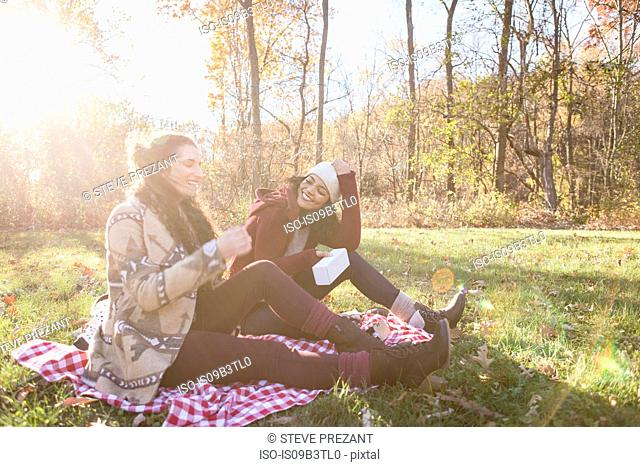 Two young women sitting on picnic blanket laughing