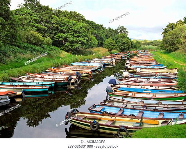 Rows of little multi-colored rowing boats are moored on Lough Leane (Lower Lake) Killarney, Ireland, after a day of carrying tourists around the lakes to see...