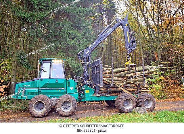 Wood getting loaded on transport vehicle