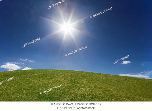 Shining sun in a blue sky over green grass
