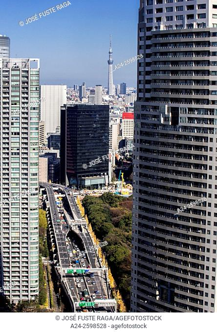 Japan, Tokyo City,Shuto expresway and Sky tree tower