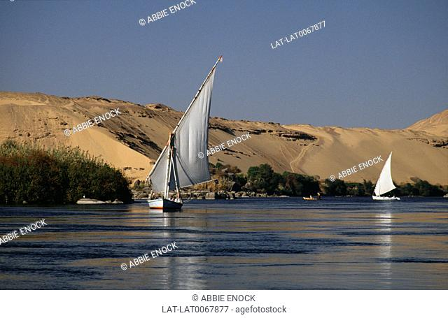 Two feluccas/ local boats. White curved sails. On calm water. Sand dune banks
